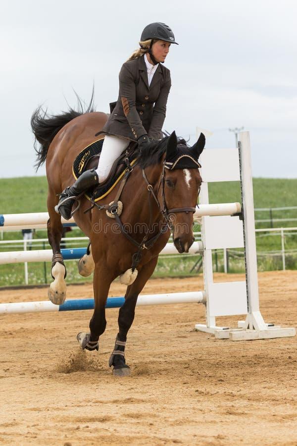 Il giovane amazzone sta atterrando il cavallo marrone verticalmente fotografie stock