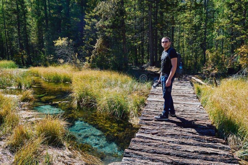 Il giovane con uno zaino e un treppiede sta camminando lungo il ponte attraverso una torrente montano nelle profondità della fore fotografia stock
