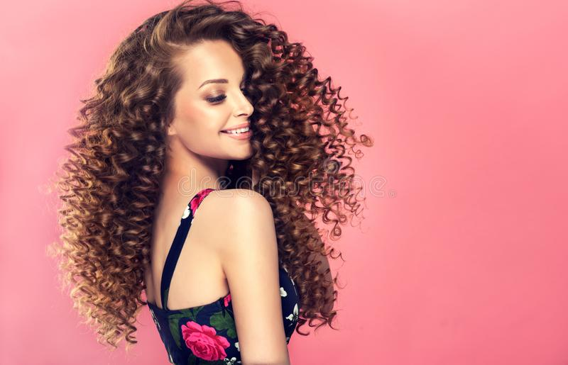 Il giovane, donna dai capelli con denso, elastico di marrone arriccia in un'acconciatura Ritratto nel profilo immagine stock libera da diritti