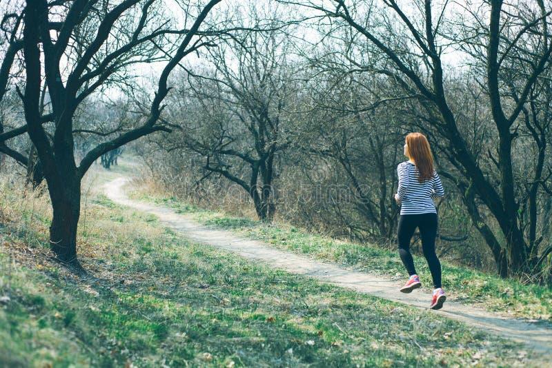 Il giovane funzionamento del corridore della traccia della donna di forma fisica sulla foresta, molla in anticipo, là non è fogli immagini stock libere da diritti