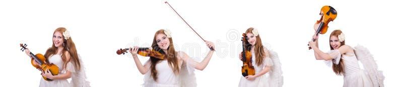 Il giovane giocatore del violino isolato su bianco fotografie stock