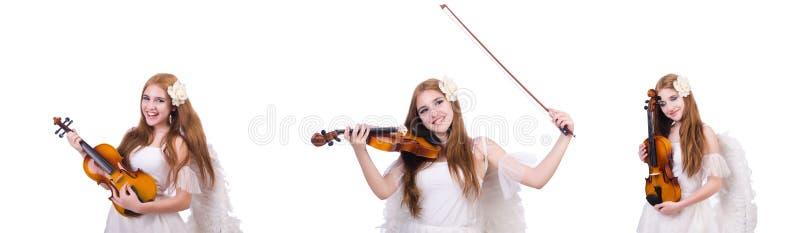 Il giovane giocatore del violino isolato su bianco fotografia stock