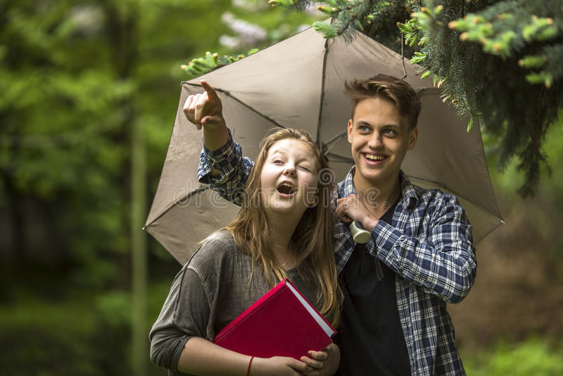 Il giovani tipo e ragazza comunicano sotto un ombrello all'aperto camminata fotografia stock libera da diritti