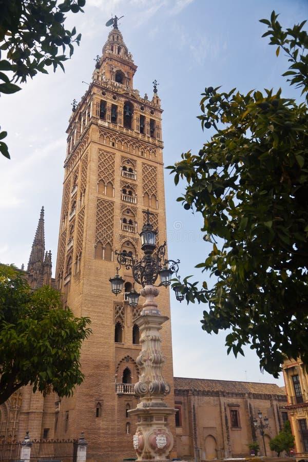 Il Giralda di Siviglia fra gli alberi arancioni. La Spagna fotografia stock libera da diritti