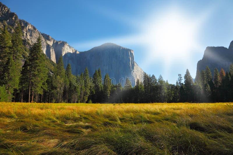 Il glade nella sosta del Yosemite su un'alba fotografia stock libera da diritti