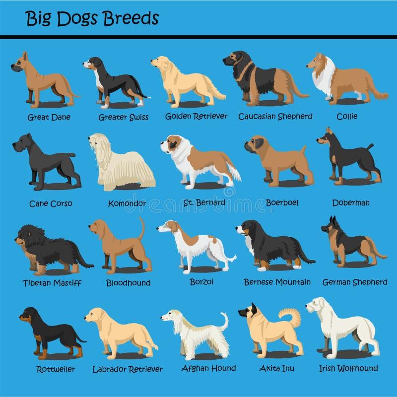Il grande cane cresce progettazione sveglia dei fumetti del cucciolo di cane di vettore di progettazione del fumetto del cane fotografia stock libera da diritti