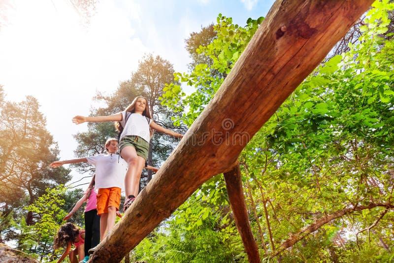Il gruppo di bambini cammina sopra l'alta connessione la foresta fotografia stock libera da diritti