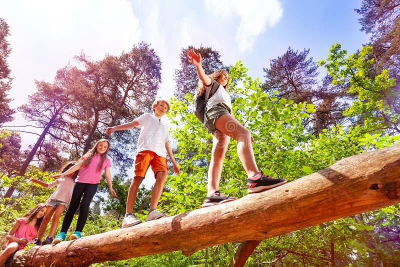 Il gruppo di bambini cammina sopra la grande connessione la foresta fotografia stock
