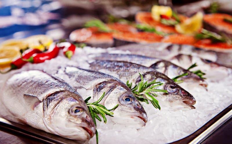 Gruppo di pesci serviti su ghiaccio fotografia stock