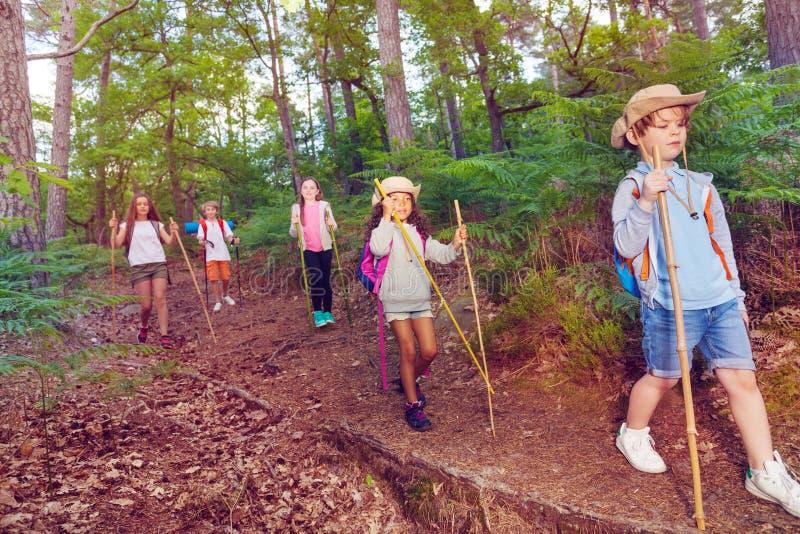 Il gruppo di piccoli bambini cammina sulla traccia di escursione dell'esploratore immagini stock