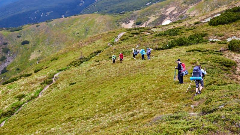 Il gruppo di viandanti che camminano in montagne fotografia stock libera da diritti