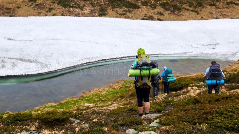 Il gruppo di viandanti che camminano in montagne fotografie stock libere da diritti