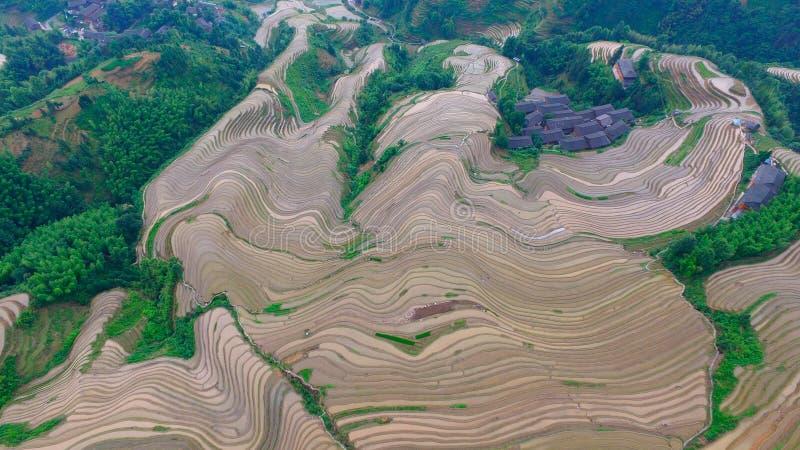 Il Guangxi posteriore Cina del drago fotografia stock libera da diritti