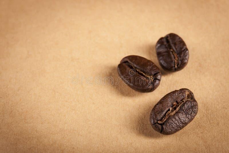 Il Guatemala ha arrostito i chicchi di caffè fotografie stock libere da diritti
