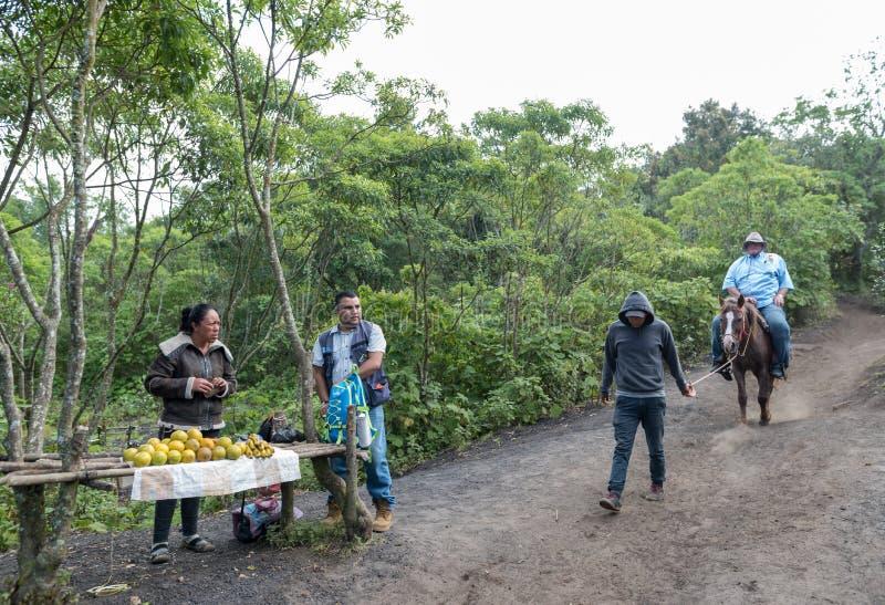 IL GUATEMALA - 10 NOVEMBRE 2017: Deposito locale della frutta sul modo al vulcano di Pacaya nel Guatemala Servizio del cavallo ne immagini stock libere da diritti