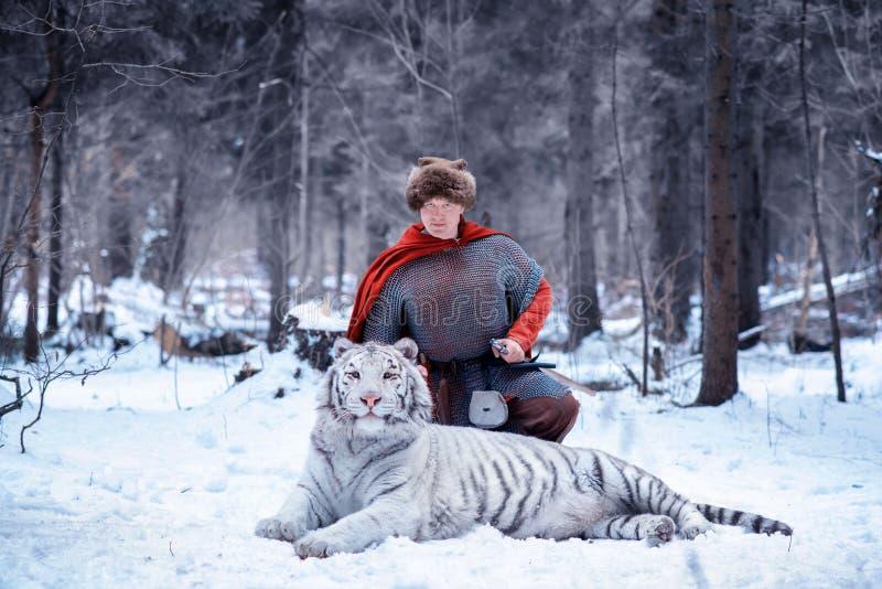 Il guerriero sta su un ginocchio accanto ad una tigre bianca immagine stock