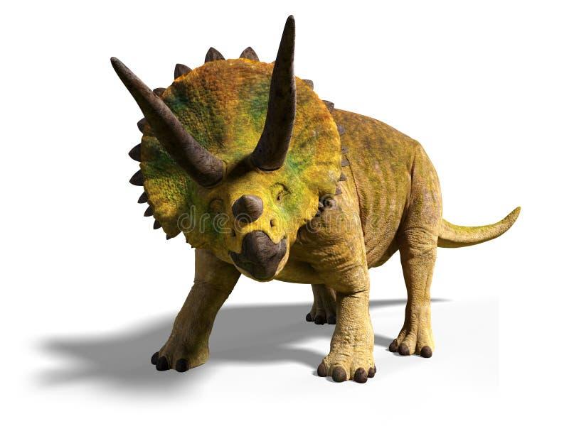 Il horridus del triceratopo del periodo cretaceo tardo fra 66 e 68 milione anni fa di 3d rende isolato con ombra sulle sedere bia illustrazione vettoriale
