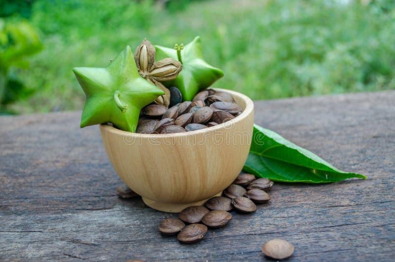 Il inchi di Sacha, semi ha proprietà medicinali immagini stock