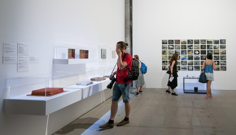 Il ` Italia di Viva Arte Viva del ` di Venezia dei Di di Biennale immagine stock