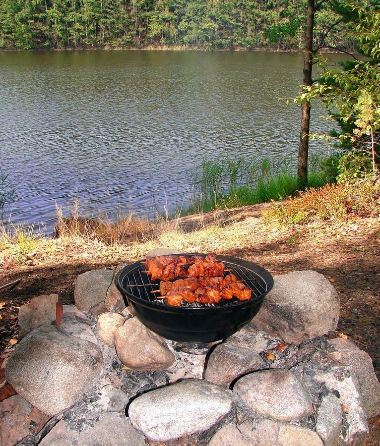 Il kebab cuoce alla griglia sulla griglia sulla riva del lago fotografia stock libera da diritti