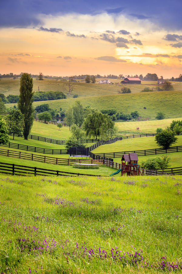 Il Kentucky rurale immagini stock