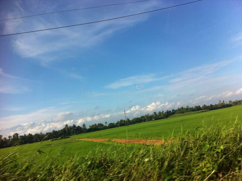 Il Kerala fotografia stock