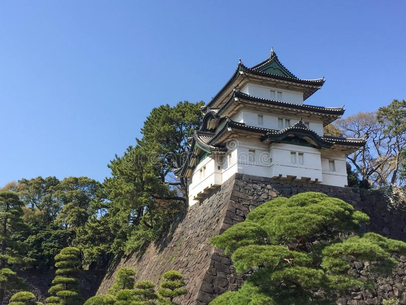 Il Kochi, Giappone - 26 marzo 2015: Vista generale del castello del Kochi dentro immagine stock libera da diritti