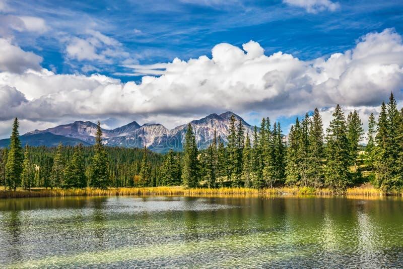 Il lago è circondato con gli abeti fotografia stock libera da diritti