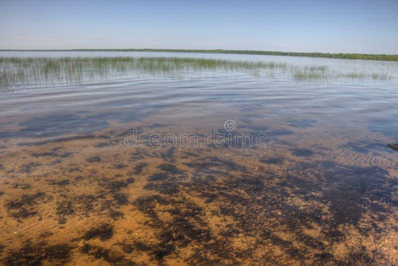 Il lago Bowstring fa parte del nativo americano Reserva del lago leech fotografie stock libere da diritti