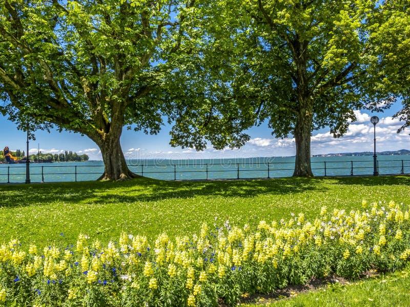 Il lago di Costanza, vista della passeggiata di Bodensee in Bregenz, Austria fotografie stock libere da diritti