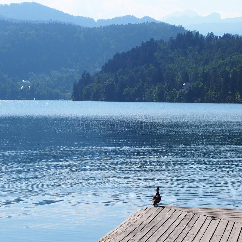 Il lago ha sanguinato in Slovenia fotografia stock libera da diritti