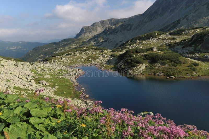 Il lago nelle montagne immagine stock libera da diritti