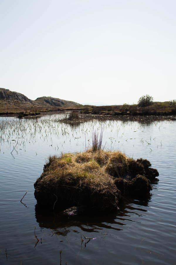 Il lago nelle montagne immagini stock libere da diritti