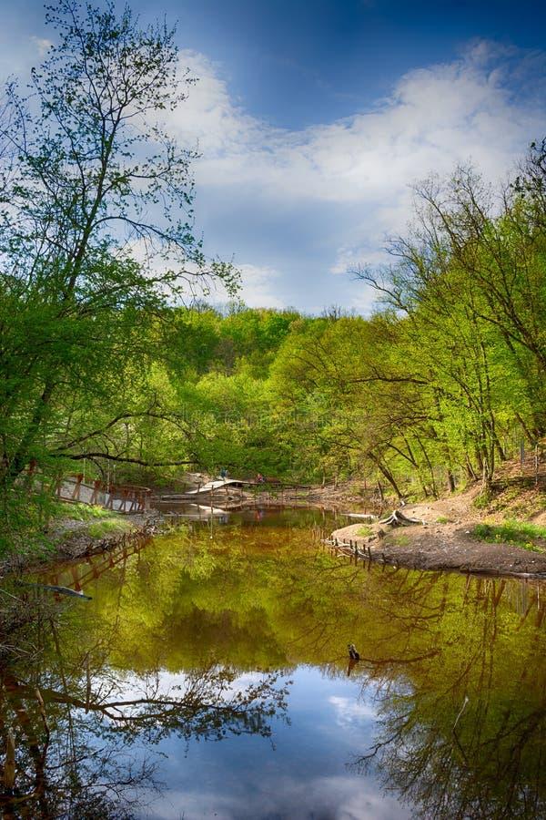 Il lago verde smeraldo di Sovata immagini stock