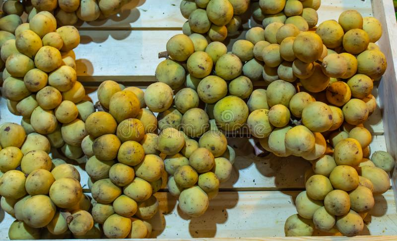 Il lansium domesticum o Longkong è i frutti tropicali tailandesi immagini stock libere da diritti