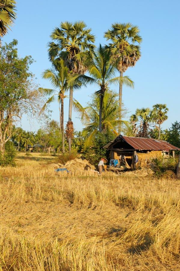 Il Laos - villaggio sul Mekong immagine stock libera da diritti