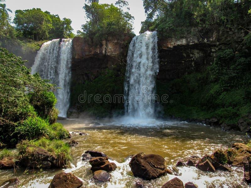 Il lato argentino del Iguassu cade, nel parco nazionale di Iguazu, immagini stock libere da diritti
