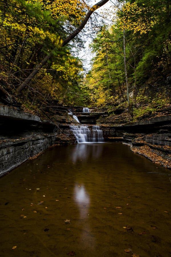 Il latticello cade parco di stato - Autumn Waterfall - Ithaca, New York immagini stock