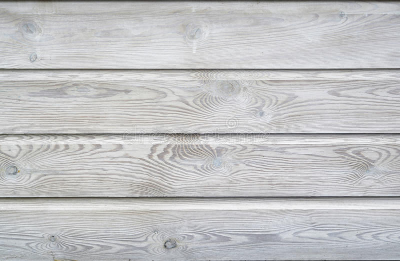 Il lavaggio bianco ha dipinto il fondo di legno di struttura delle plance degli scaffali con gli anelli di crescita e i vains di  fotografia stock libera da diritti