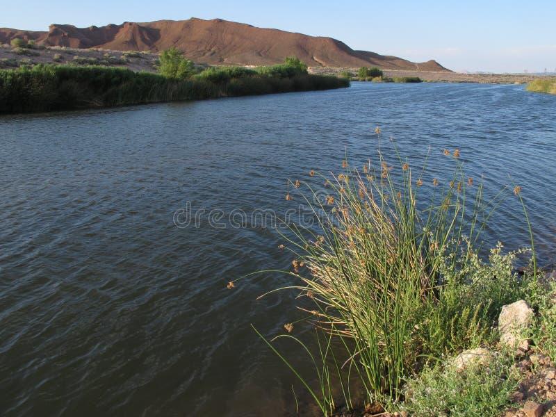 Il lavaggio di Las Vegas, Clark County Wetlands Park, Las Vegas, Nevada immagine stock libera da diritti