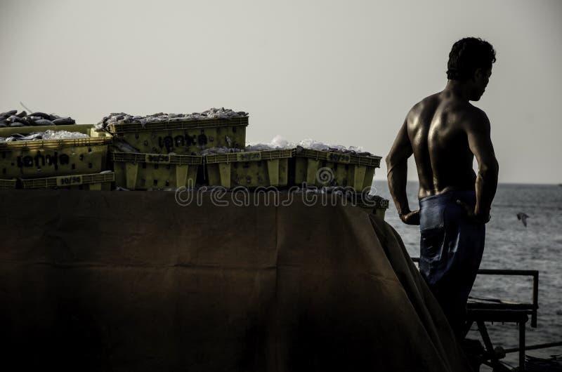 Il lavoratore non identificato che aspetta porta il canestro del pesce per trasportare immagine stock libera da diritti