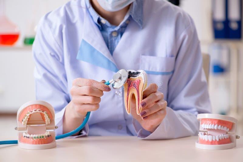 Download Il Lavoro Di Pratica Del Dentista Sul Modello Del Dente Fotografia Stock - Immagine di conferenziere, controllo: 117977284