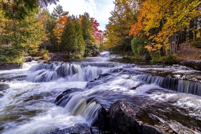 Il legame cade in autunno immagini stock