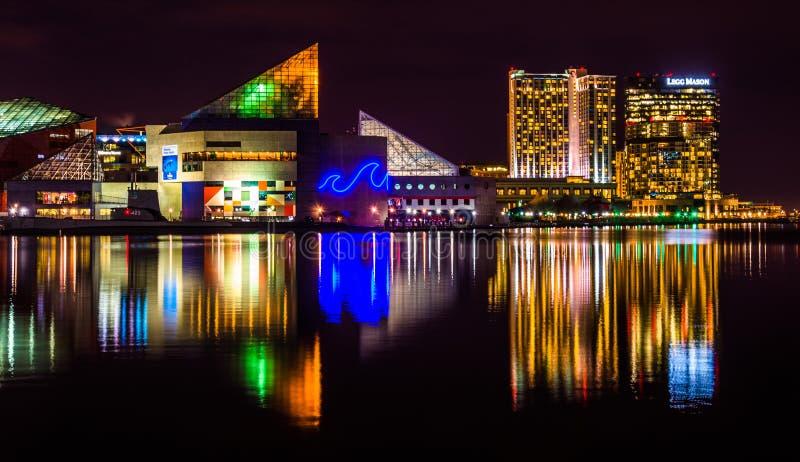 Il Legg Mason Building ed acquario nazionale alla notte, nella I immagine stock libera da diritti