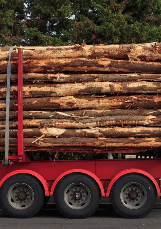 Il legname collega un camion di silvicoltura immagine stock libera da diritti