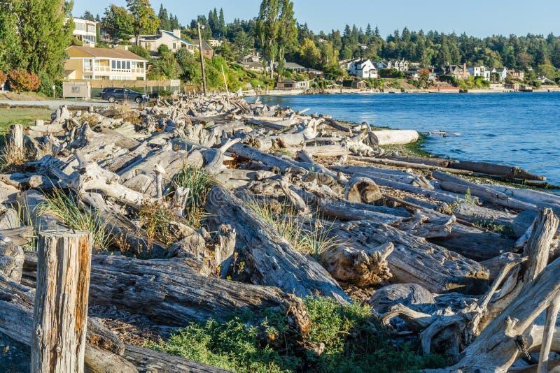 Il legname galleggiante della linea costiera accatasta 2 fotografie stock