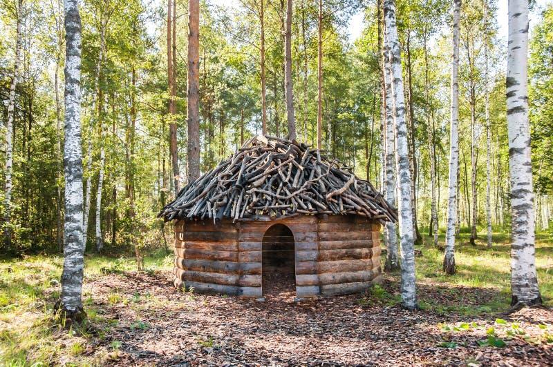 Il legname ha fatto la capanna nella foresta della betulla immagine stock libera da diritti