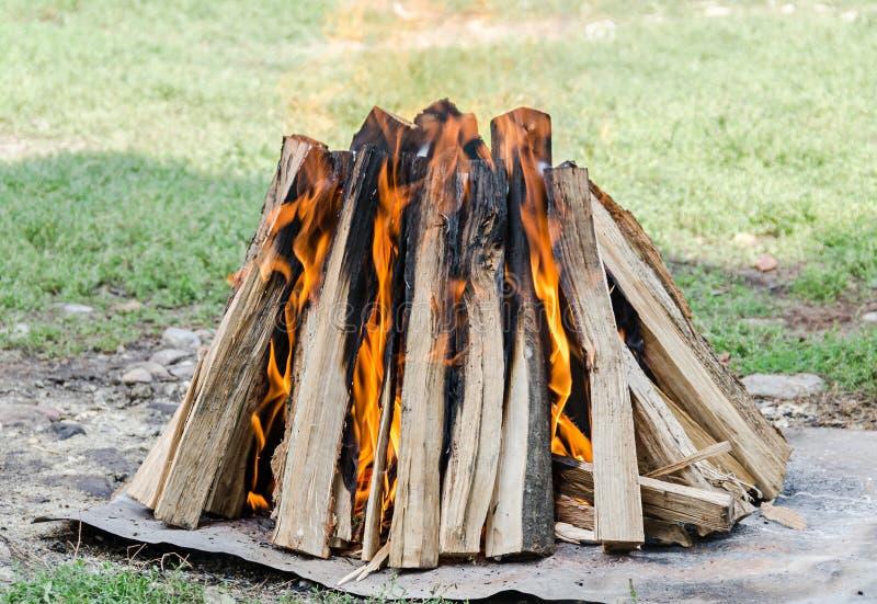 Il legno collega il fuoco, fuoco all'aperto per il barbecue, fiamme colorate, fine su immagine stock