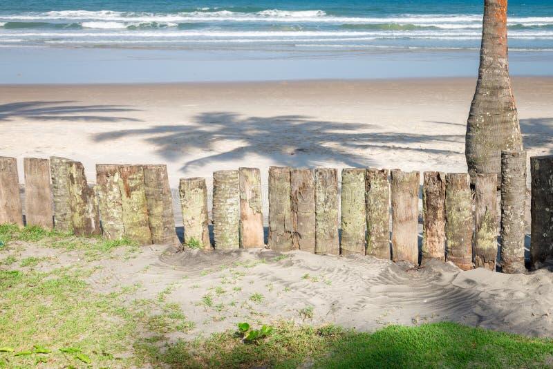 Il legno del tronco della palma recinta la spiaggia fotografia stock libera da diritti