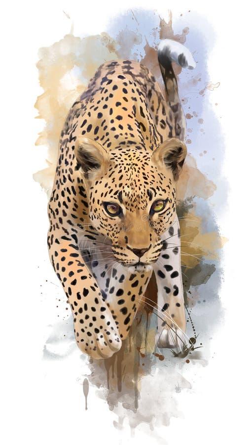 Il leopardo e l'acquerello spruzza il ritratto illustrazione di stock